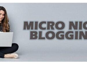 best micro niche for blogging 2021